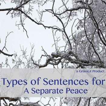 Help with a persuasive essay about A Separate Peace?