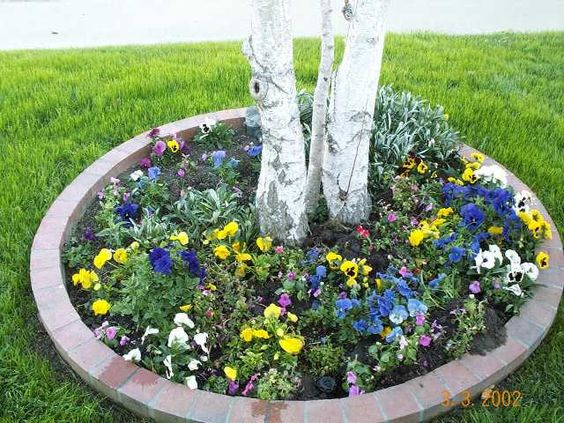 Flower Garden Ideas For Around Trees ideas on flowers around a tree | ideas for around trees | victory