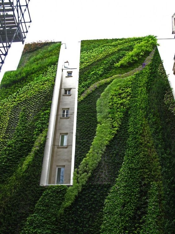 Covered Building | Tall Building | Contemporary Architecture | Vertical Garden | Eco Green | Landscape Design
