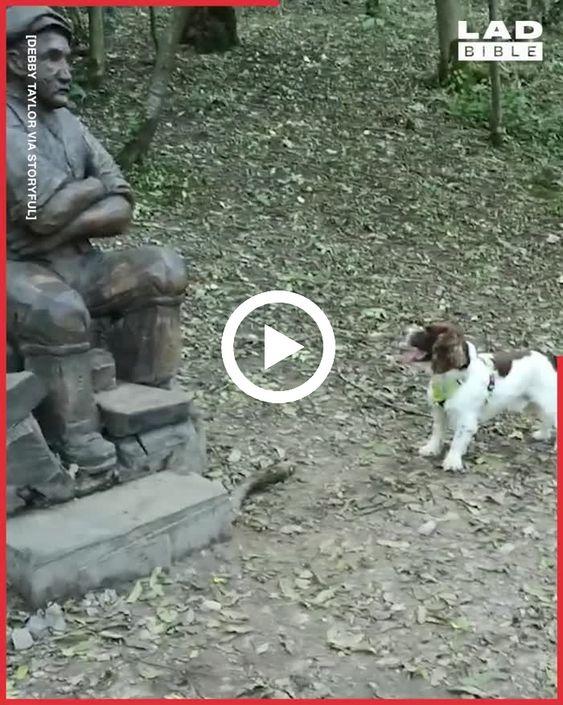 Cachorro está só observando o homem estátua