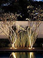 .: Iluminação paisagística.