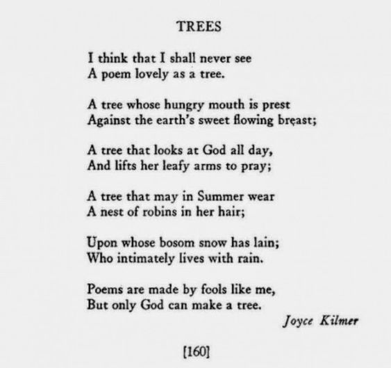 short poems by famous poets with images to share - Google ...