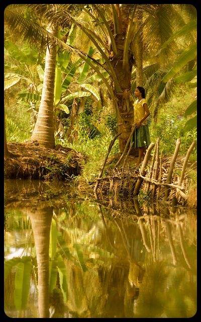 Kerala's Backwaters, India (source: triciaannemitchell.com)