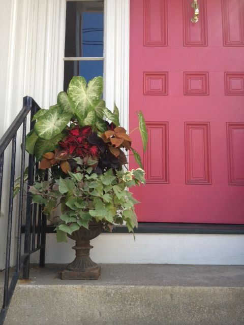 red door container