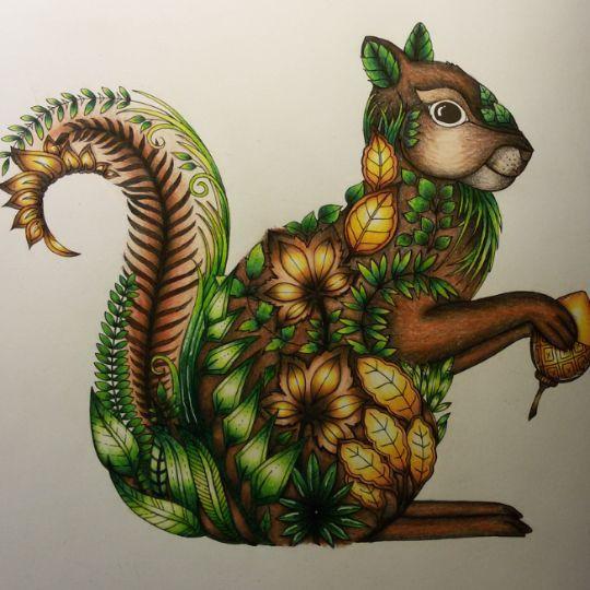Enchantedforest Johannabasford Coloringbook Squirrel