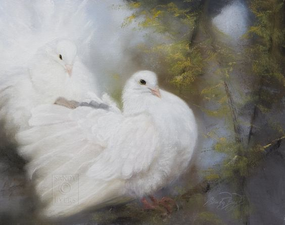 """Sandy Byers Pastel painting, """"Hope's Landing"""" There is always a light that shines on Hope's Landing. white doves BIRD Animal Painting"""