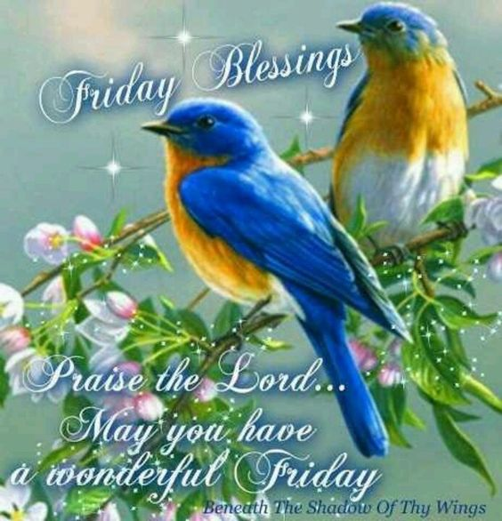 friday blessings sayings with pictures   60 Friday Blessing Quotes And Sayings