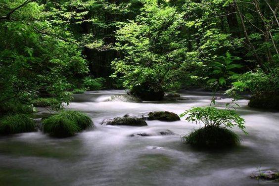 「奥入瀬渓流」は、十和田湖の「子ノ口」から「焼山」まで14kmにわたって続く渓流。遊歩道を使えば、「子ノ口」から「焼山」までは5時間程度で辿りつくことができます。