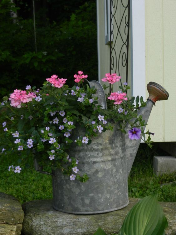 Antique watering can with annual mix watering cans pinterest sun the head and front porches - Growing petunias pots balconies porches ...