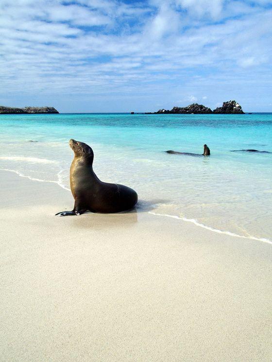 Las playas mas bonitas de Sudamérica