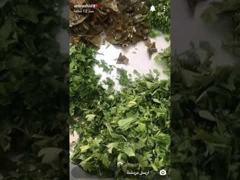 مضروبة ورق عنب ام راشد Youtube Plants