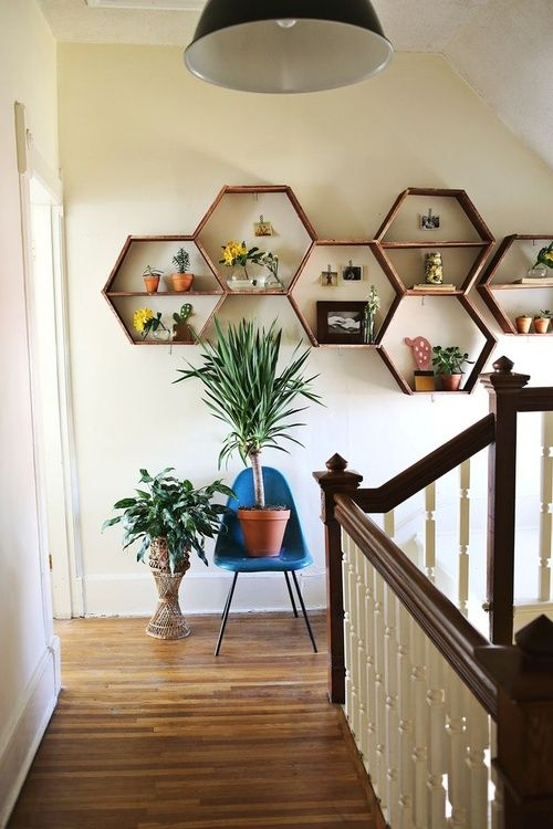 honeycomb shelving. Thinking this would be a great DIY project!