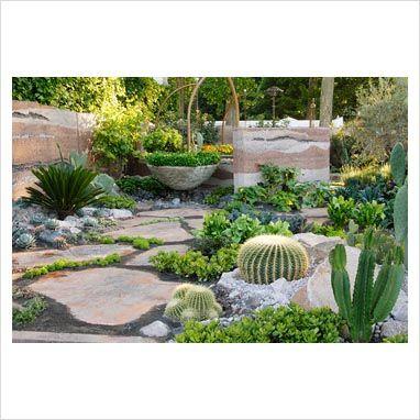 'southwestern' cozy garden planting