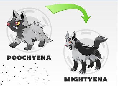 What Level Does Poochyena Evolve poochyena evolution - ...