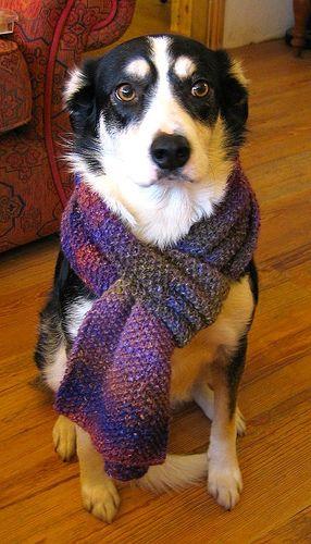 Noro silk garden moss stitch scarf