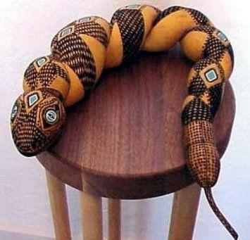 Amazon.com : Snake Gourd 5 Seeds - Grow your own slippery snake ...