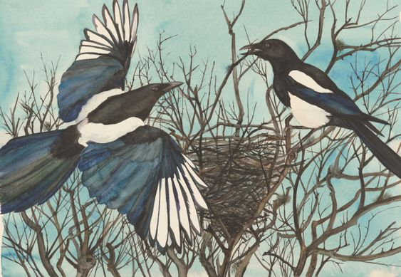 Jackie Morris illustration from 'The Lost Words; A Spell of Words' by Robert MacFarlane and Jackie Morris