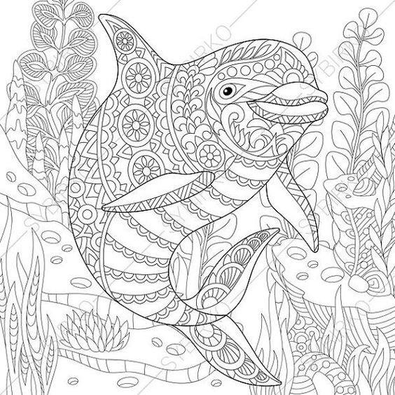 Dolphin Adult Coloring Page. Zentangle by ColoringPageExpress: