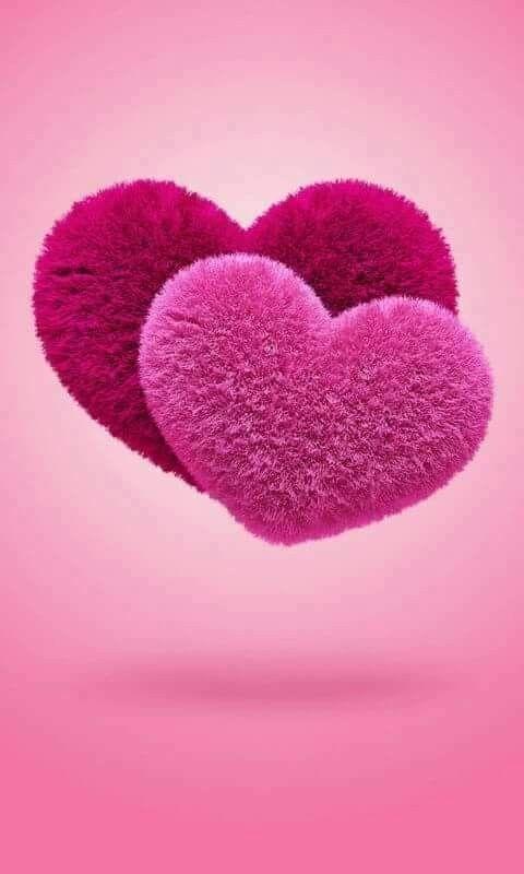 يجب على كل أنسان أن يراعي قلوب الناس فإذا انكسر قلب شخص فليحرص