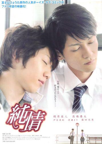 SentidoGay - Peliculas Series Cine Anime Gay Online Gratis : Estreno: Junjou Pure Heart (Sub Español) Online
