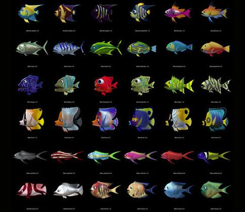 Fish in finding nemo sea creatures pinterest for Finding nemo fish