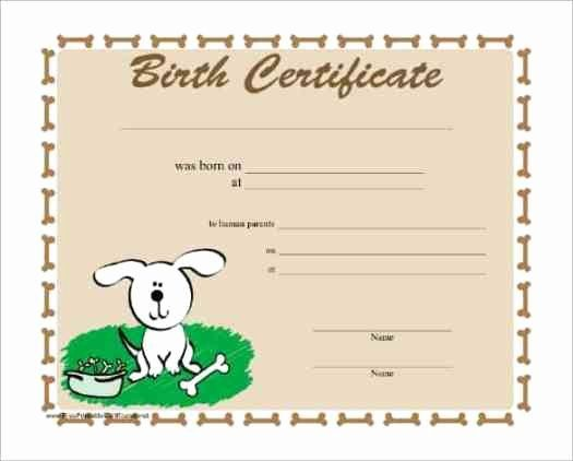 Birth Certificate Template Doc Best Of Sacramento California Birth Certificate Application In 2020 Birth Certificate Template Certificate Templates Birth Certificate