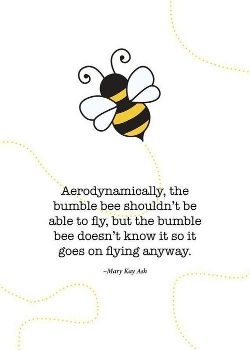 """""""Aerodinámicamente, el abejorro no debería ser capaz de volar, pero el abejorro no lo sabe por lo que vuela de todos modos.""""   Mary Kay Ash"""