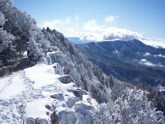Beautiful Snowflake In The Sunlight: Beautiful New Mexico Winter Scene