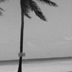 "Photographie noir et blanc ""plage interdite au nudisme"" martinique, mai  2015"