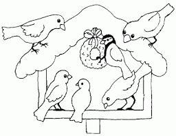 Výsledek obrázku pro ptáčci v zimě