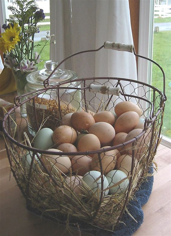 Eggs Farm Style at the Ranch by chinmayo on Etsy, $5.00