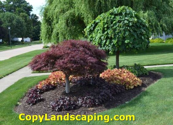 Nice tips front yard landscaping ideas for ranch style for Landscaping ideas for front of ranch style house