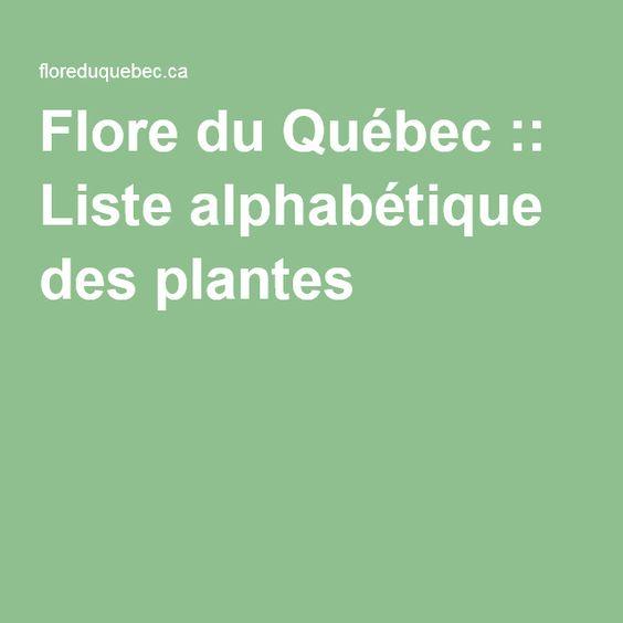 Flore du Québec :: Liste alphabétique des plantes