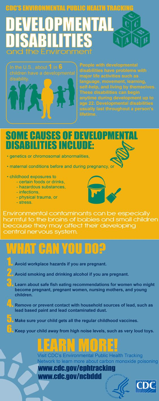 An Infographic on Developmental Disabilities.