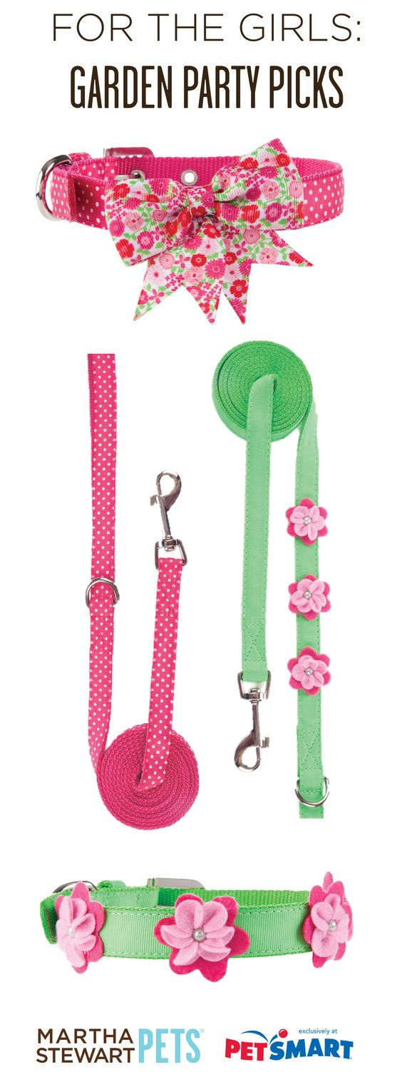 The #MarthaStewartPets Garden Party collection has the perfect mix of pink, green, dots, and bows! Only at #PetSmart.: Pets Flossie Nala Maddy, Bella Jack, Collar, Marthastewartpets Garden, Doggy Do S, Pets Stuff