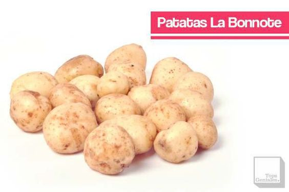 Patatas La Bonnote