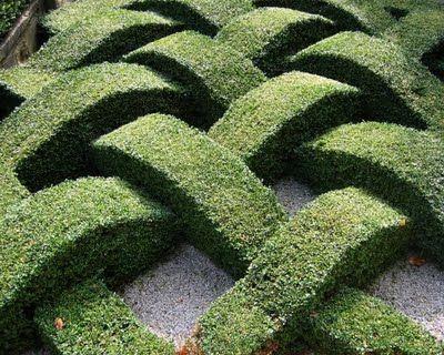 woven garden