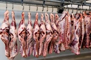 The Bible Diet and Scary News on the Meat YOU Eat! on http://www.draxe.com