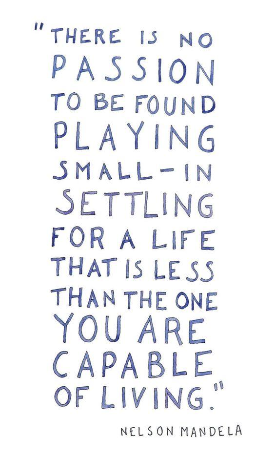 don't settle.: