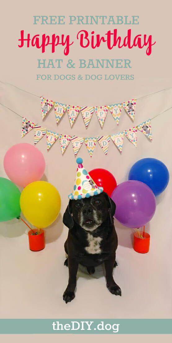 Celebrating Dog Birthdays Free Printable Party Kit Happy Birthday Banner Printable Happy Birthday Banner Printable Free Birthday Banner Free Printable