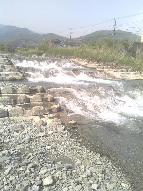 2012.5.17 yadoroki nakatu_river 1
