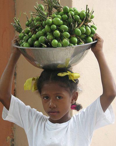 limoncillo dominicano   Le gustan los limoncillos?   La Verdad Dominicana™: Noticias ...
