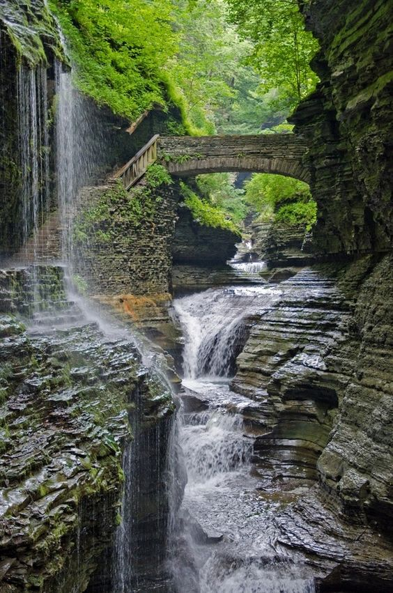Watkins Glen State Park is the most famous of the Finger Lakes State Parks located on the edge of the village of Watkins Glen, New York, south of Seneca Lake in Schuyler County. T: