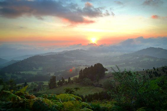 Reserva Forestal El Chayote-Costa Rica