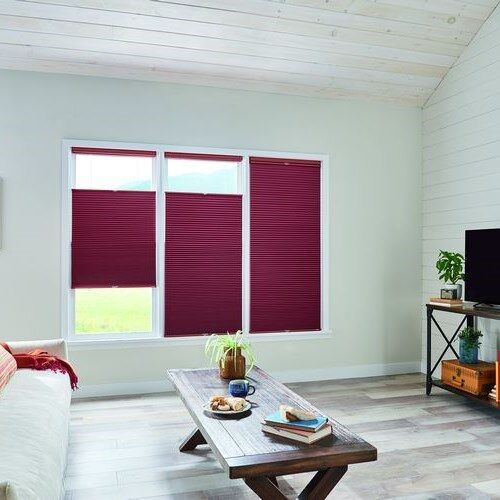 Blackout Cellular Shade In 2020 Cellular Shades Shades Blinds Window Treatments Living Room