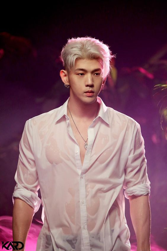 Top Ten Handsome Kpop Male Idols In 2020 Fans Choice Kpop Guys Kard Bm Kard