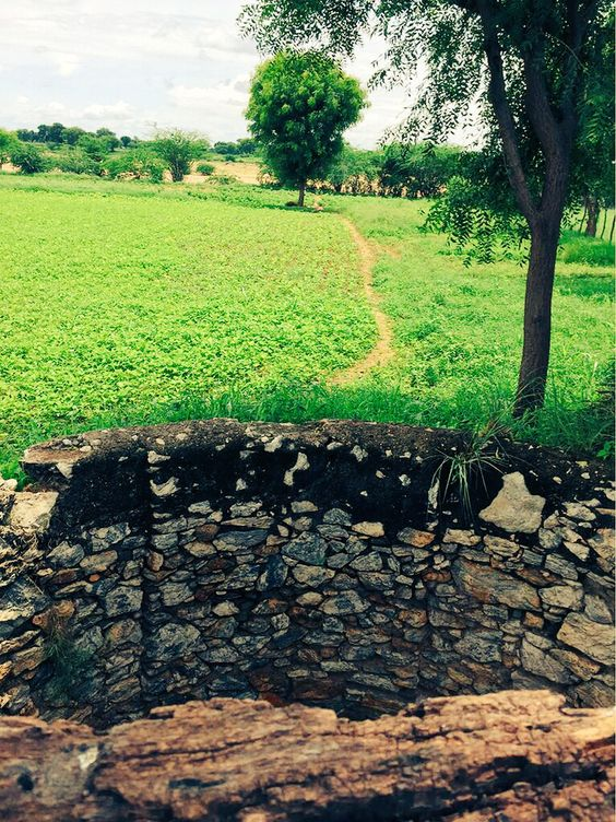 A well in a farmhouse #yaALLAHpictures #naturephoto #naturephotography