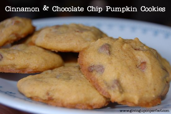 Cinnamon & Chocolate Chip Pumpkin Cookies