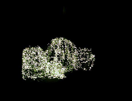 Corredor de entrada - Luzes