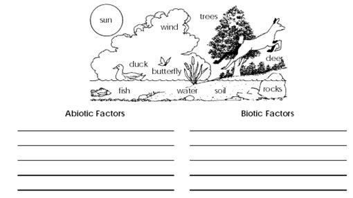 ecology biotic and abiotic factors worksheet - Google Search ...